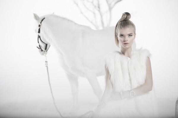 BHC_white_pony16059-ft-e1387491172970