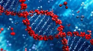 DNA-728x400