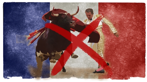 ban-bullfighting-in-france-xl