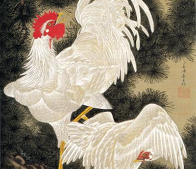 老松白鶏図:若冲動植綵絵