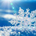 今年もそろそろ降る…冬の風景を楽しむ雪の名前10選